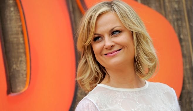 Amy Poehler Highest Paid TV Actresses 2017