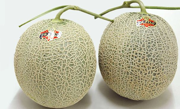 Yubari King Melon, World's Most Expensive Fruits 2017