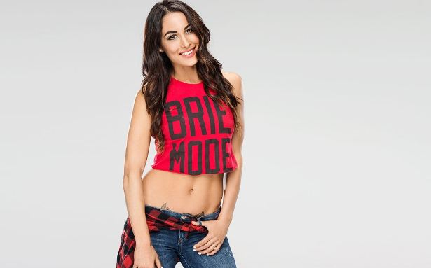 Brie Bella Top 10 Hottest And Most Popular WWE Diva In The World 2018