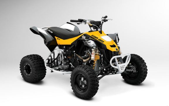 Can - Am DS 450 X MX expensive quad bikes 2016-2017