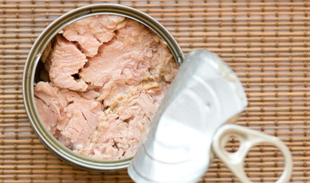Canned tuna cheapest foods 2016-2017