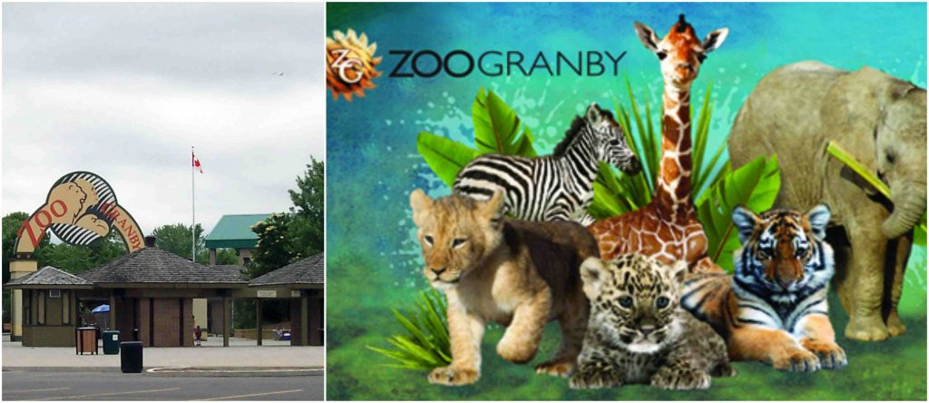 Granby Zoo, Most Popular Largest Zoos in Canada 2017