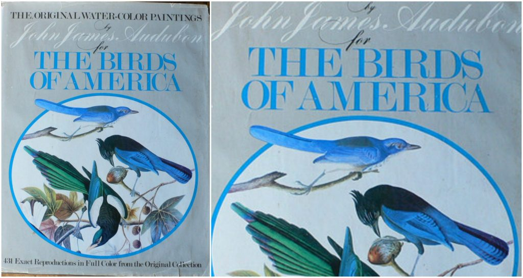 The Birds of America, World's Most Expensive Books 2019
