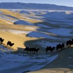 Top 10 Most Popular Hottest Deserts In The World