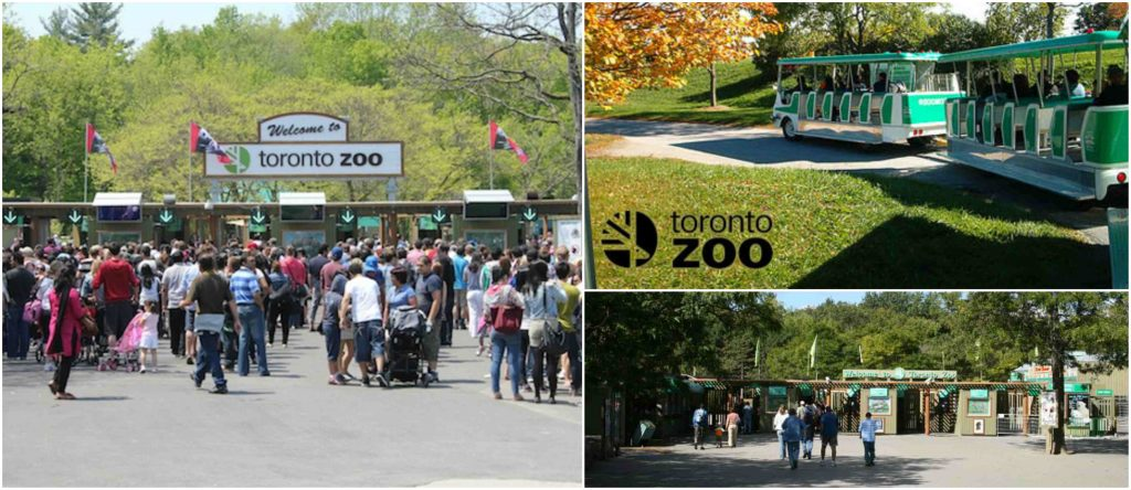 Toronto Zoo, Most Popular Largest Zoos in Canada 2018