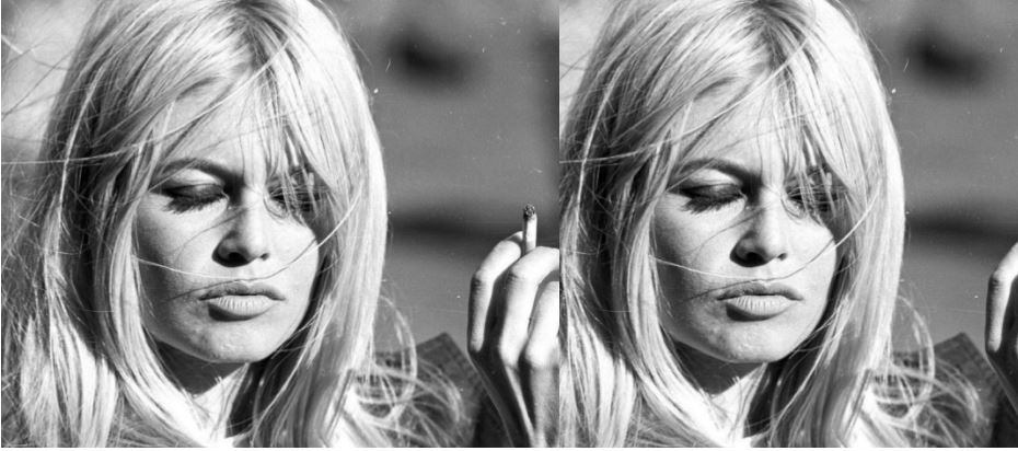 Brigitte Bardot Top Most Celebs Who Are Aging Horribly 2017