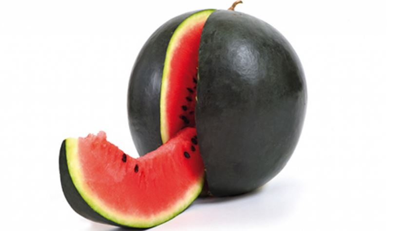 Densuke Black Melon