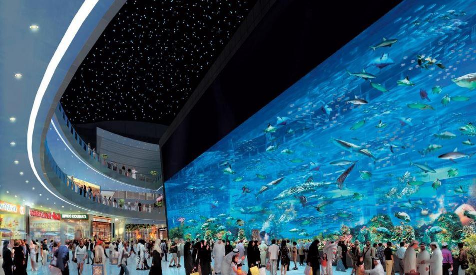 Dubai Mall Aquarium, Dubai Top Most Amazing Aquariums In The World 2017