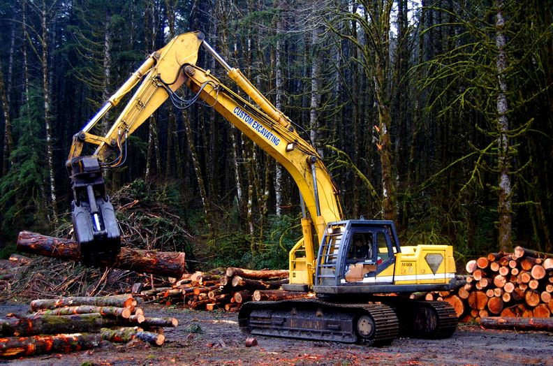logging-top-most-tough-dangerous-jobs