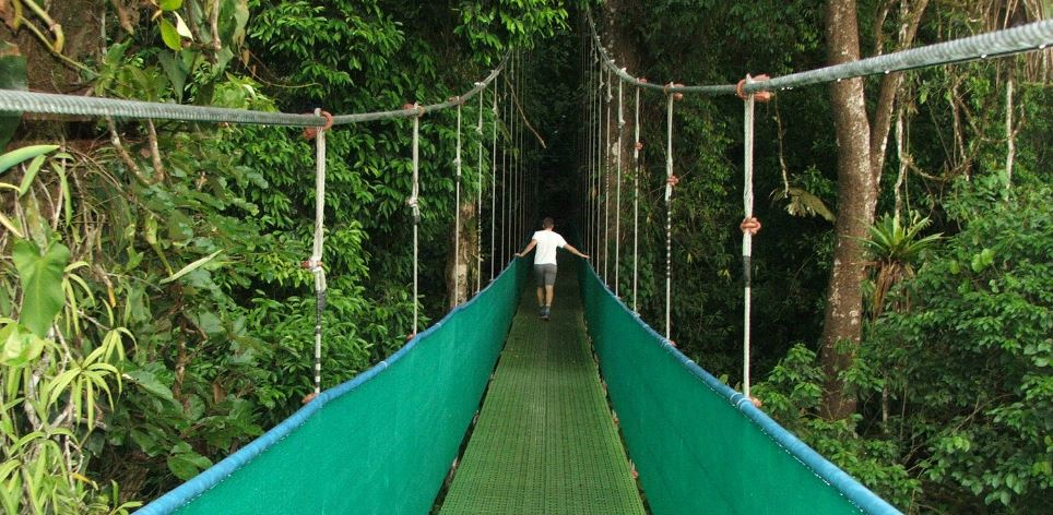 arenal-sky-walk-top-10-unforgettable-skywalks-from-around-the-world-2017