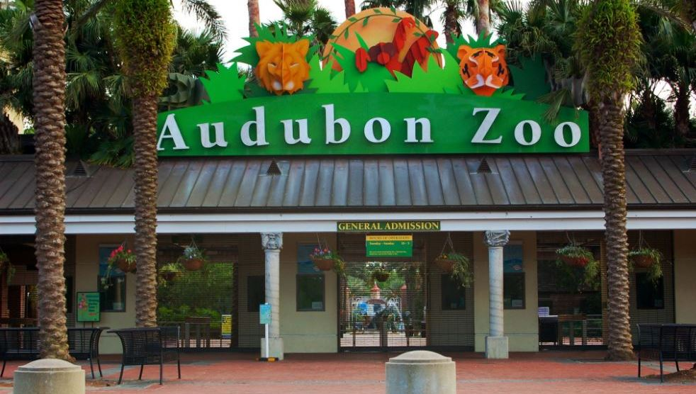 audubon-zoo-top-ten-best-zoos-in-the-usa-2017