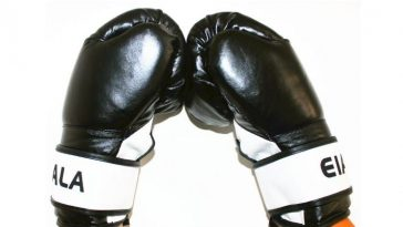 eiala-pro-style-training-boxing-gloves-top-popular-boxing-gloves-in-the-world-2017