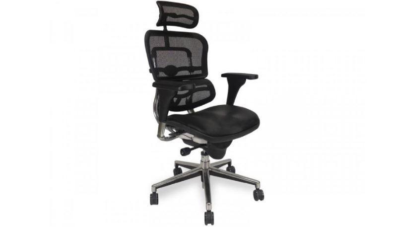 ergohuman-high-back-mesh-chair-top-best-selling-ergonomic-office-chairs-2017