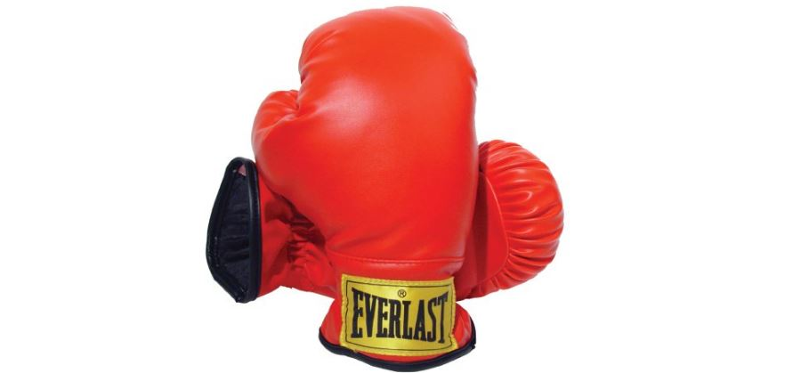 Everlast 3003 Youth Boxing Gloves Top Most Popular Boxing Gloves in The World 2018