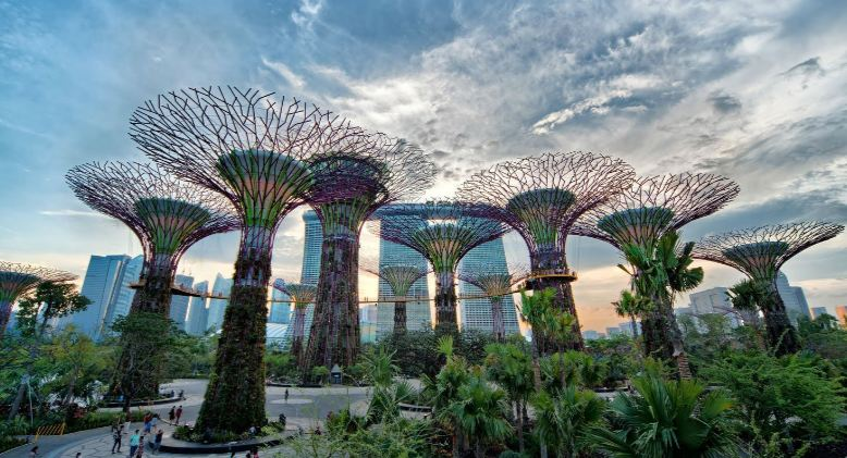gardens-by-the-bay-top-most-popular-places-to-visit-in-singapore-2018