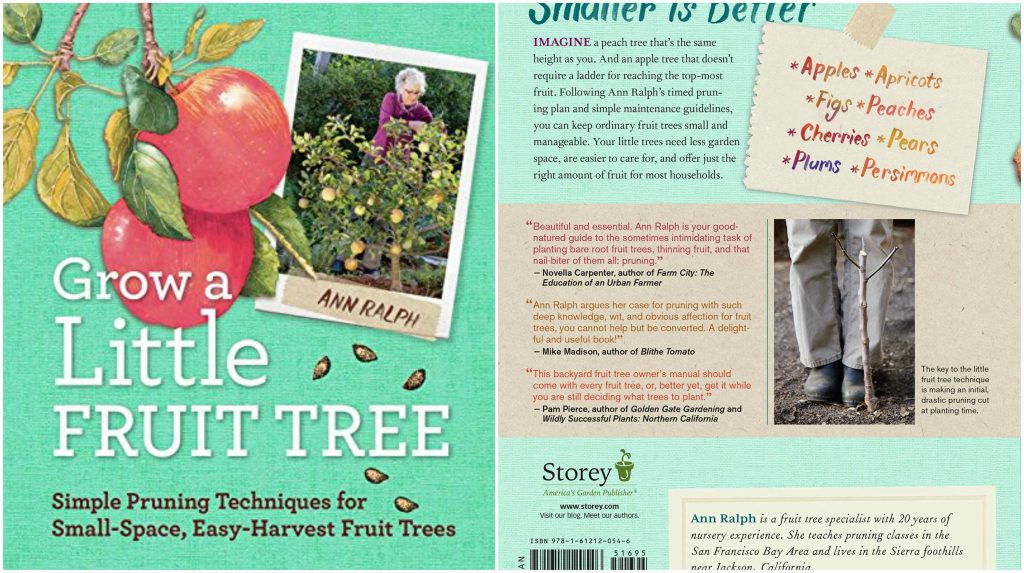 grow-a-little-fruit-tree-top-10-best-selling-gardening-books-in-2017