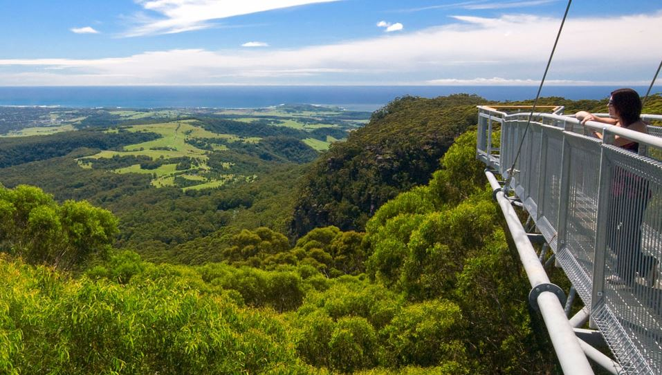 illawarra-fly-tree-top-walk-australia-top-famous-unforgettable-skywalks-from-around-the-world-2018