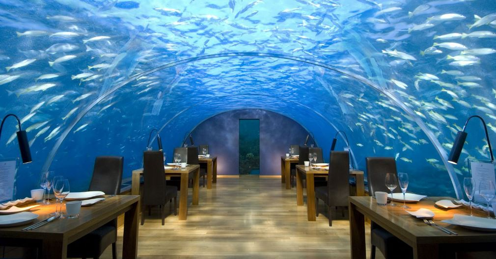 ithaa-undersea-restaurant-top-famous-quirky-restaurants-of-the-world-2018