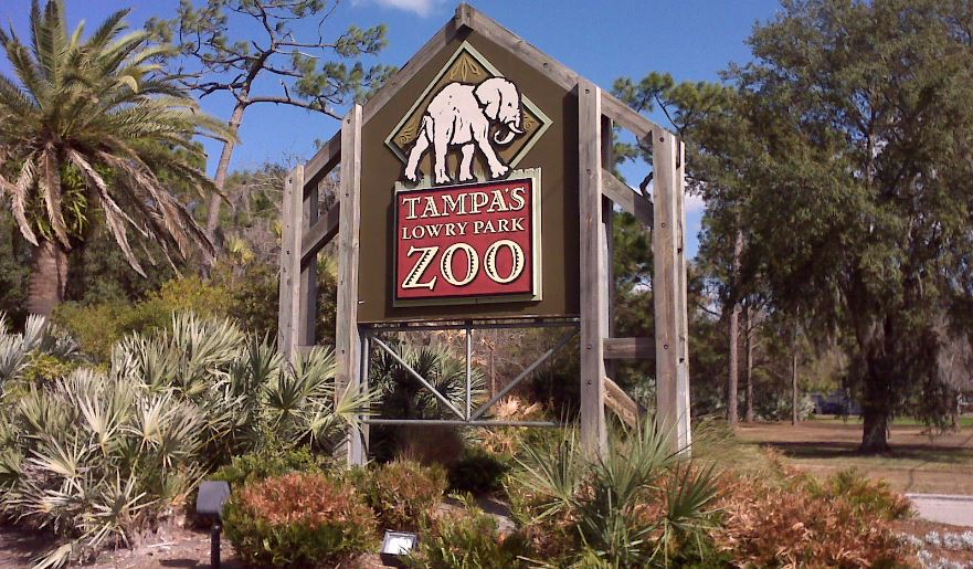 lowry-park-zoo-top-ten-best-zoos-in-the-usa