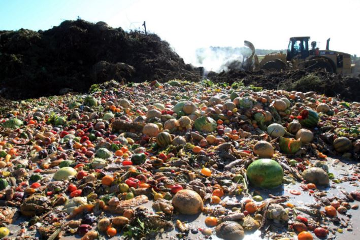 NORWAY Top 10 Countries With Highest Rate of Food Wastage