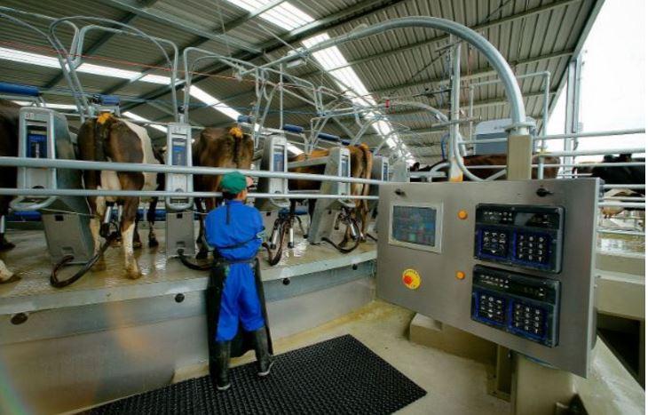 New Zealand Top Popular Milk Producing Countries 2019