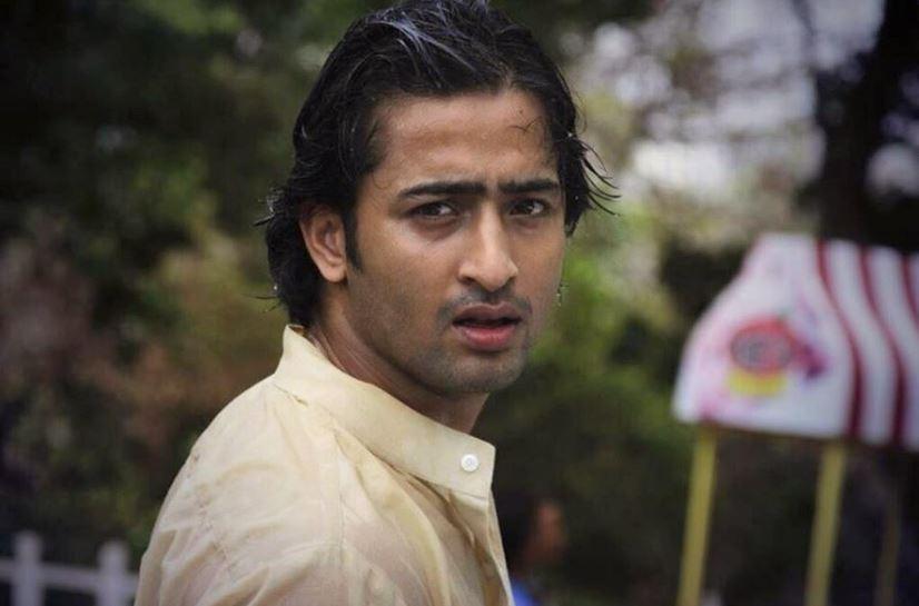 shaheer sheikh, Top 10 Most Handsome Indian TV Serial Actors 2017