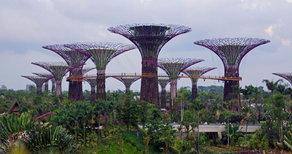 skywalk-at-supertree-grove-gardens-by-the-bay-singapore