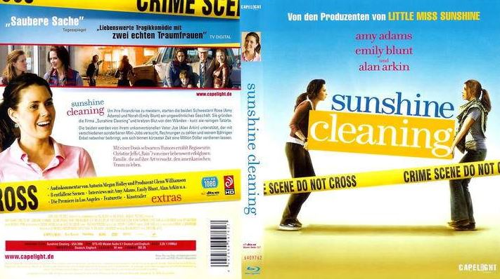 Sunshine Cleaning Top 10 Movies by Emily Blunt