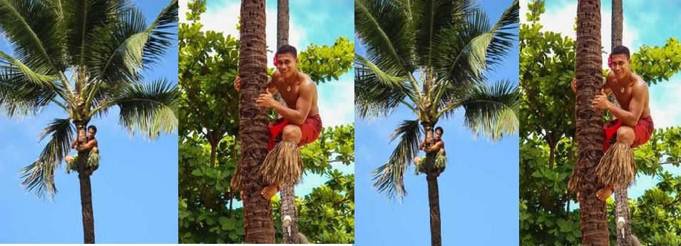 the-championship-on-climbing-to-palm-trees-top-most-famous-strangest-competitions-2019