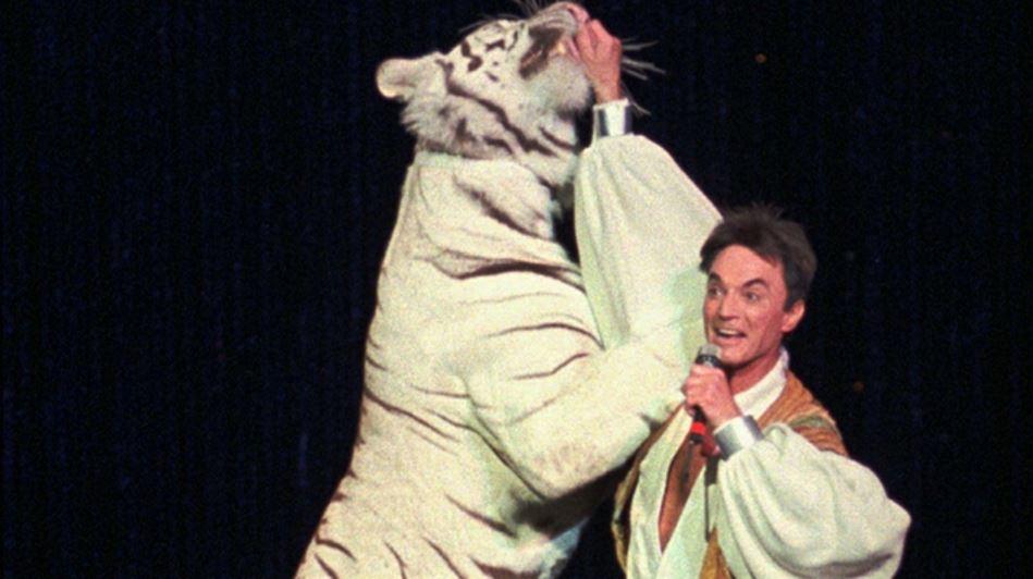 tiger-attacks-roy-horn