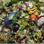 Top 10 Countries With Highest Rate of Food Wastage