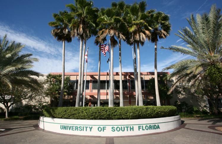 university-of-south-florida