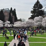 Top 10 Best Universities in Washington