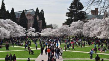 university-of-washington-top-popular-universities-of-washington-2019