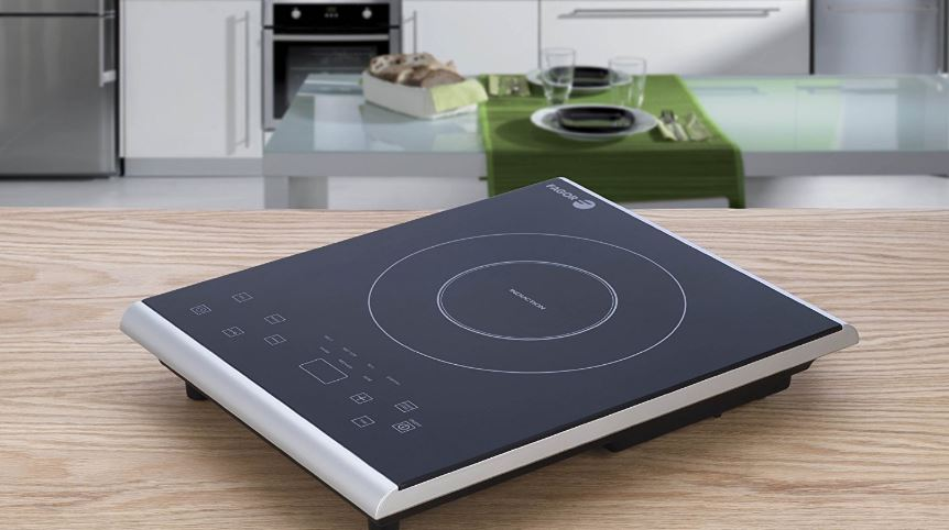 Fagor America Portable Cooktop Top Popular Induction Cooktop Review in 2018