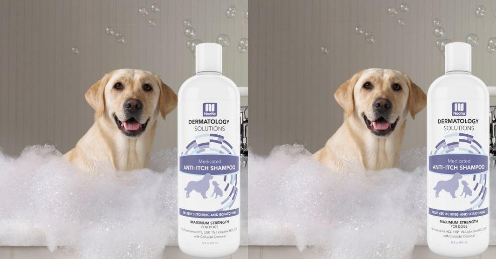 Medicated Oatmeal Dog shampoo Anti-ITCH maximum Strength Formulation