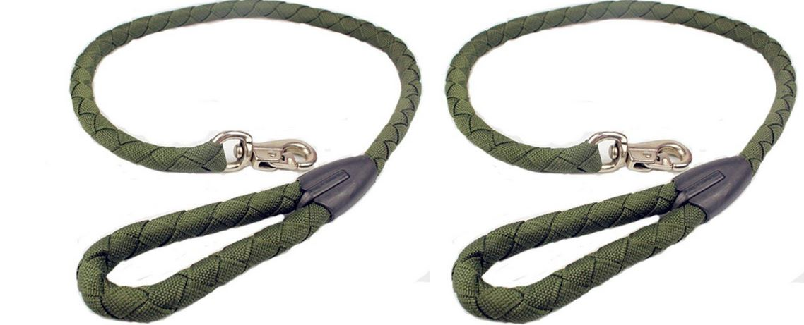 Nylon Loop Slip Dog Leash